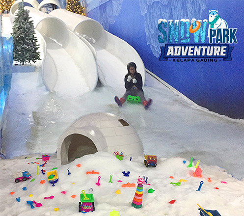 Snow Park Adventure