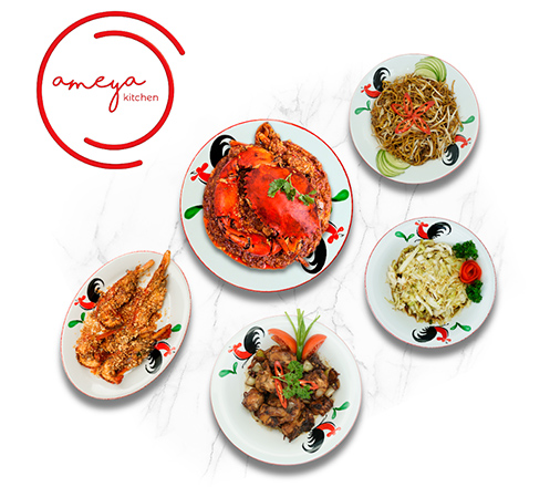 Special Package for 4 at Ameya Kitchen Somerset Grand Citra