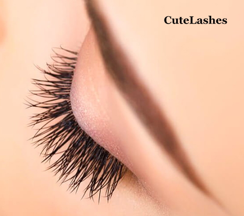 Eyelash Extension, Cat Eyes, Korean Natural, Japanese Style