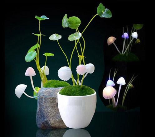 Avatar Ceramic Mushroom Led Light