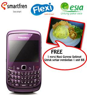 BlackBerry CDMA 8530 3G 1