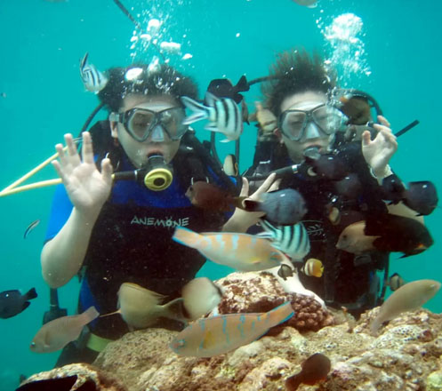 Scuba Diving 2x at Nusa Dua Bali 02