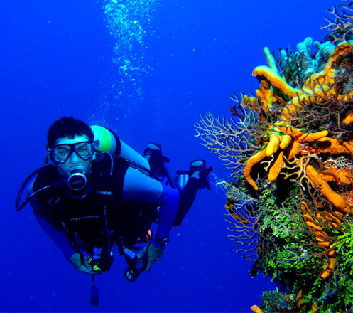 Scuba Diving at Tulamben Bali