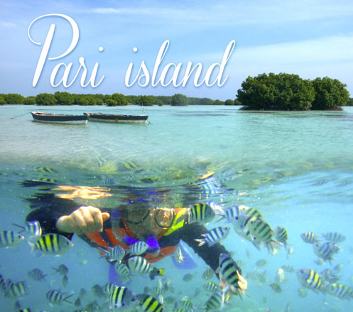 Pari Virgin Beach Island 02