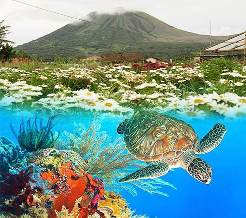 Tour Bunaken Island Manado 4D3N 02