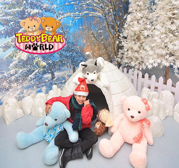 Teddy Bear World