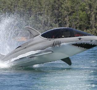 Sea Breacher yang Bisa...